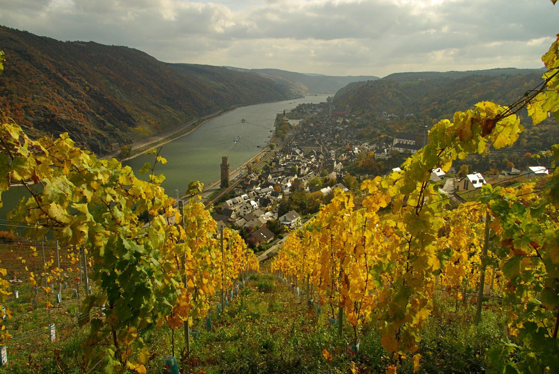 Günderodehaus Siebenjungfrauenblick Oberwesel Panoramablick Mittelrheintal